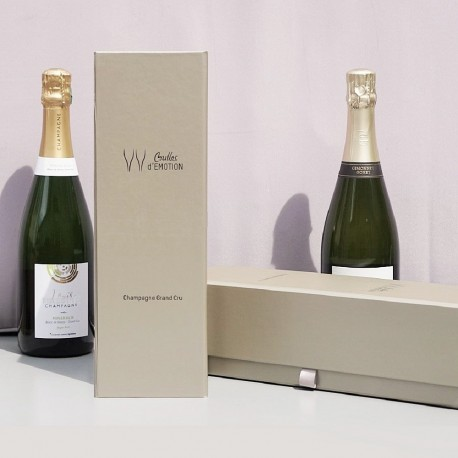 champagne tasting course oenology wine original gift present paris