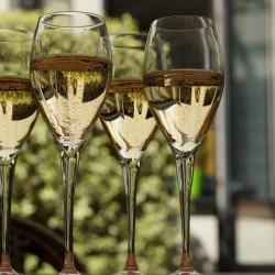 Comment bien choisir son champagne : initiation à l'œnologie