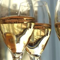Cours d'œnologie Champagne