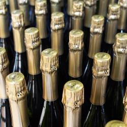Champagne B2B